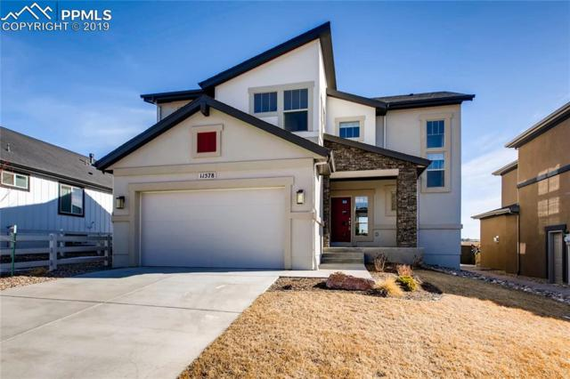 11578 Spectacular Bid Circle, Colorado Springs, CO 80921 (#2248436) :: The Treasure Davis Team