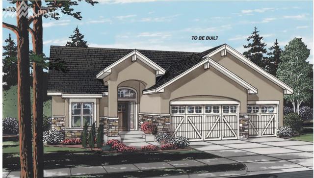 14165 Gleneagle Drive, Colorado Springs, CO 80921 (#2250366) :: 8z Real Estate