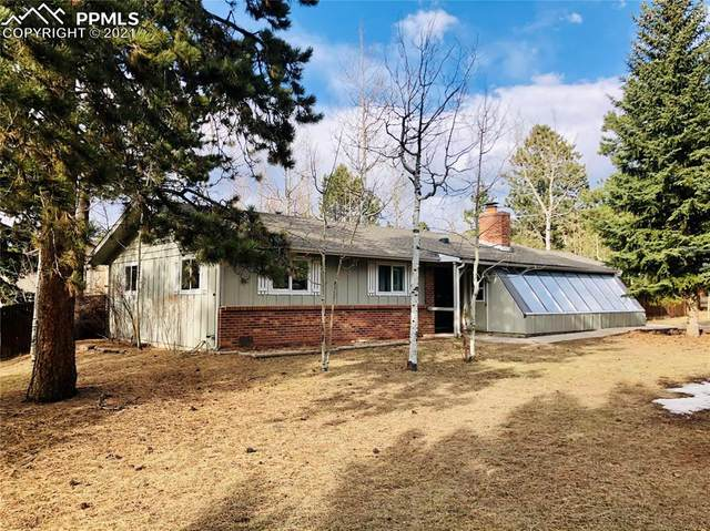858 Teller Lane, Woodland Park, CO 80863 (#2253613) :: The Treasure Davis Team | eXp Realty