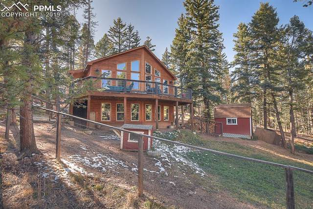 243 Donzi Trail, Florissant, CO 80814 (#2254624) :: The Peak Properties Group