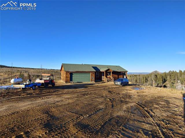 10398 County Road 51, Divide, CO 80814 (#2256412) :: The Daniels Team