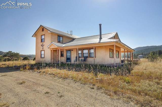 102 Excelsior Circle, Silver Cliff, CO 81252 (#2259921) :: Tommy Daly Home Team