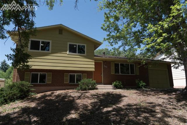 4950 Whimsical Drive, Colorado Springs, CO 80917 (#2268346) :: Colorado Home Finder Realty