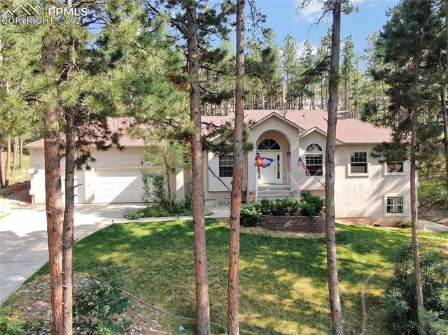 17345 E Caribou Drive, Monument, CO 80132 (#2268701) :: Action Team Realty