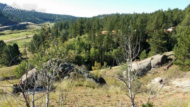 881 Stonehenge Drive, Florissant, CO 80816 (#2269312) :: 8z Real Estate