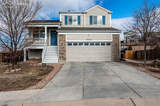 7922 Calamint Court, Fountain, CO 80817 (#2271089) :: The Harling Team @ HomeSmart