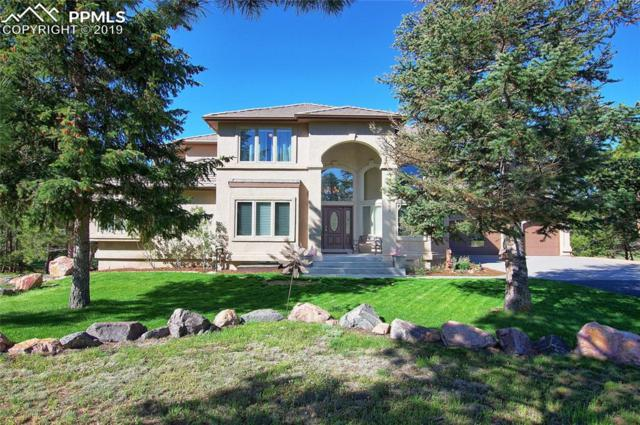17592 Colonial Park Drive, Monument, CO 80132 (#2273794) :: Action Team Realty