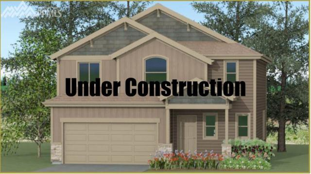 6111 Anders Ridge Lane, Colorado Springs, CO 80923 (#2277088) :: 8z Real Estate