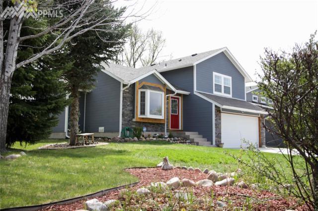 1145 Sandpiper Drive, Colorado Springs, CO 80916 (#2278632) :: 8z Real Estate