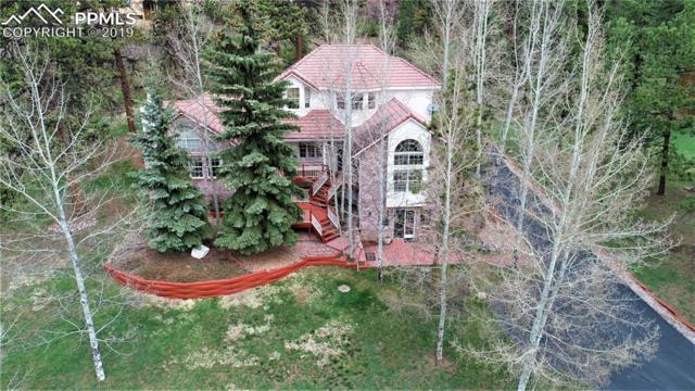 1000 Sun Valley Drive, Woodland Park, CO 80863 (#2281807) :: 8z Real Estate