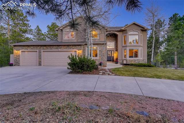 1355 Ambergate Court, Monument, CO 80132 (#2282814) :: The Gold Medal Team with RE/MAX Properties, Inc