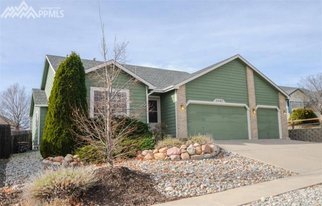 5480 Plumstead Drive, Colorado Springs, CO 80920 (#2283309) :: The Daniels Team
