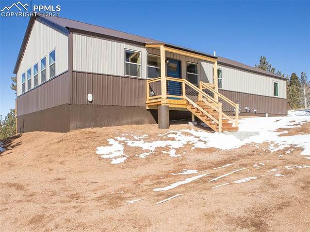 96 Cameron Circle, Florissant, CO 80816 (#2290707) :: Action Team Realty