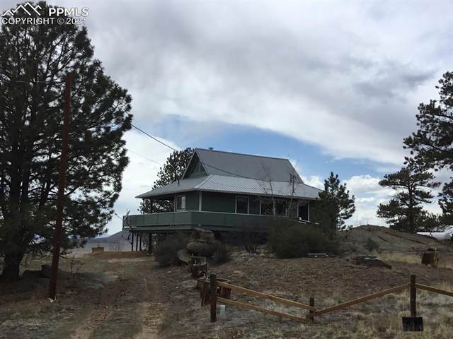 58 Ruby Circle, Lake George, CO 80827 (#2292373) :: Tommy Daly Home Team