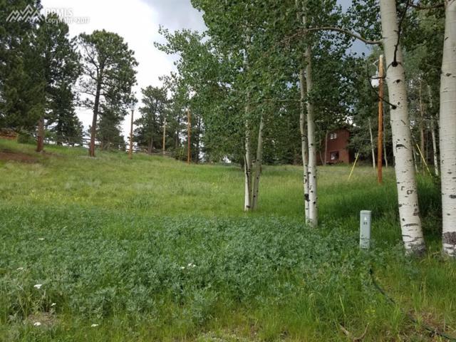51 Valley Lane, Woodland Park, CO 80863 (#2293555) :: 8z Real Estate