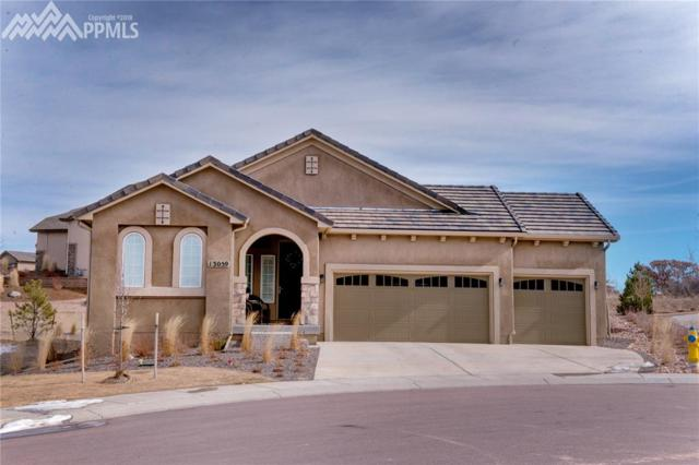 13059 Duckhorn Court, Colorado Springs, CO 80921 (#2293757) :: The Hunstiger Team