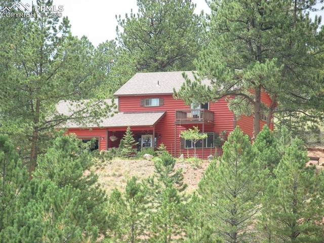 855 Gold King Drive, Cripple Creek, CO 80813 (#2295165) :: Tommy Daly Home Team