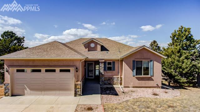 1558 Piney Hill Point, Monument, CO 80132 (#2303088) :: 8z Real Estate