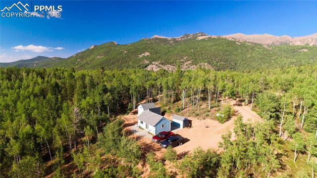2749 County 61 Road, Cripple Creek, CO 80813 (#2303183) :: Jason Daniels & Associates at RE/MAX Millennium