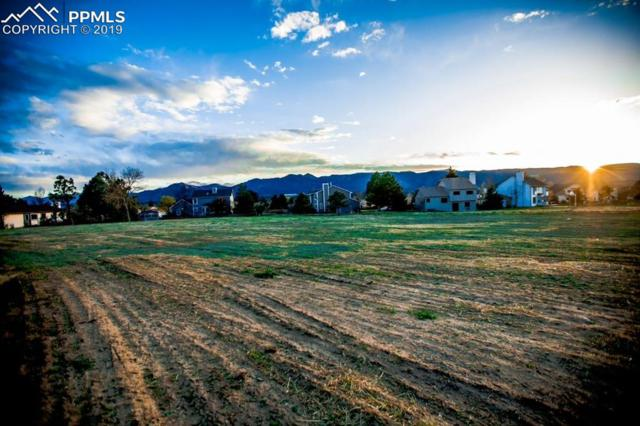 12112 Stone Eagle Place, Colorado Springs, CO 80921 (#2303194) :: Action Team Realty