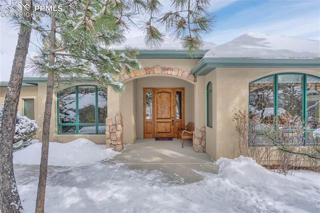 4865 Longwood Point, Colorado Springs, CO 80906 (#2304027) :: Tommy Daly Home Team