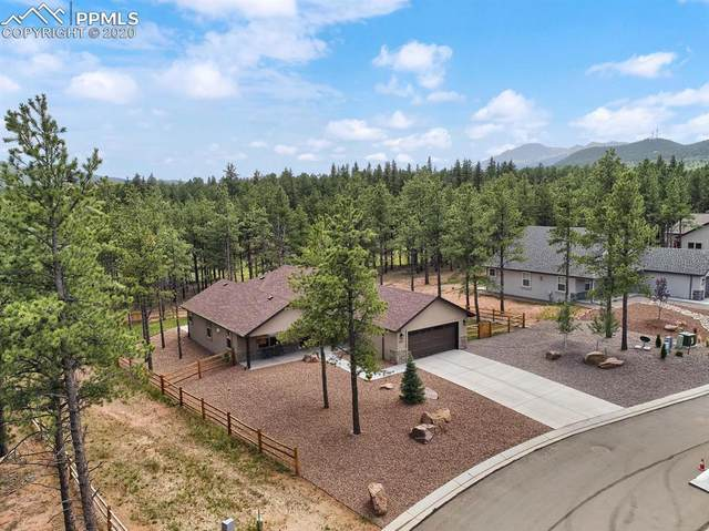 1333 Firestone Drive, Woodland Park, CO 80863 (#2305885) :: Finch & Gable Real Estate Co.