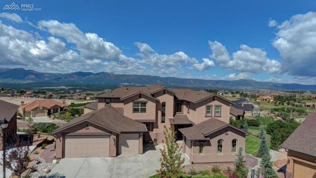 12654 Chianti Court, Colorado Springs, CO 80921 (#2312721) :: Action Team Realty