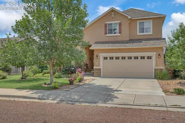 14114 Tern Drive, Colorado Springs, CO 80921 (#2316206) :: Tommy Daly Home Team