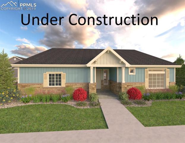 6652 Golden Briar Lane, Colorado Springs, CO 80927 (#2316417) :: Venterra Real Estate LLC