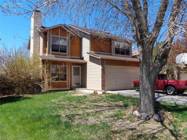 3975 Dolphin Circle, Colorado Springs, CO 80918 (#2316609) :: 8z Real Estate