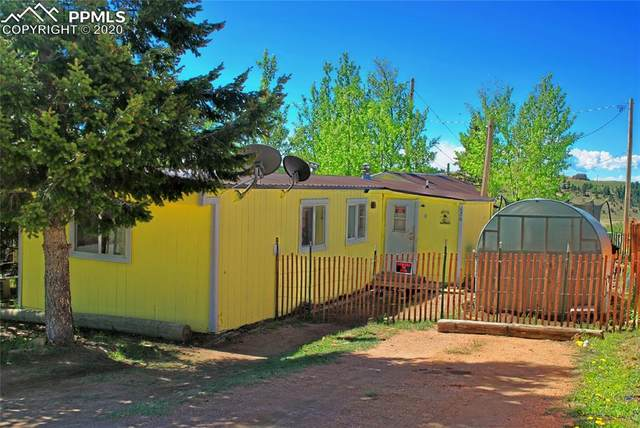 420 W Golden Avenue, Cripple Creek, CO 80813 (#2318746) :: The Treasure Davis Team