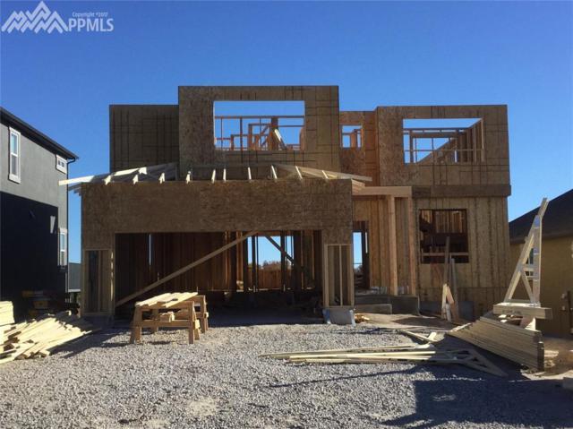 3951 Horse Gulch Loop, Colorado Springs, CO 80924 (#2328008) :: 8z Real Estate
