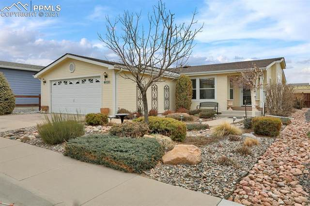4384 Gray Fox Heights, Colorado Springs, CO 80922 (#2328886) :: Hudson Stonegate Team