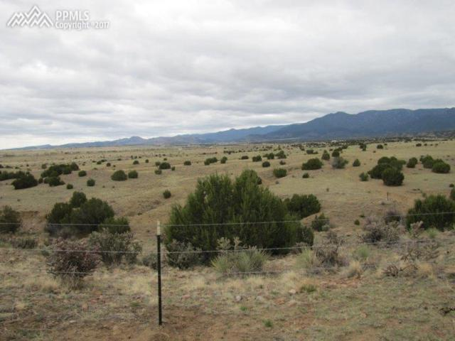 TBD Highway 67 Highway, Florence, CO 81226 (#2330069) :: Perfect Properties powered by HomeTrackR