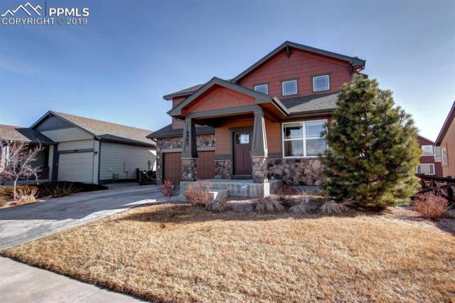 6983 Mountain Spruce Drive, Colorado Springs, CO 80927 (#2337407) :: The Peak Properties Group
