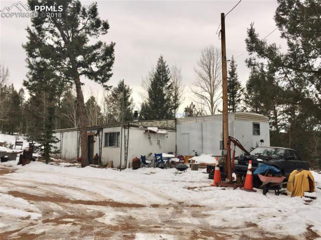 5520 County 5 Road, Divide, CO 80814 (#2342237) :: The Peak Properties Group