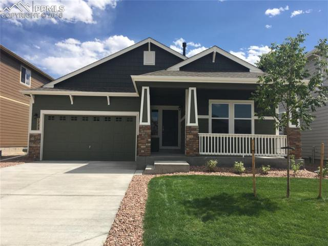 1755 Sandy Shore Lane, Monument, CO 80132 (#2346427) :: Jason Daniels & Associates at RE/MAX Millennium