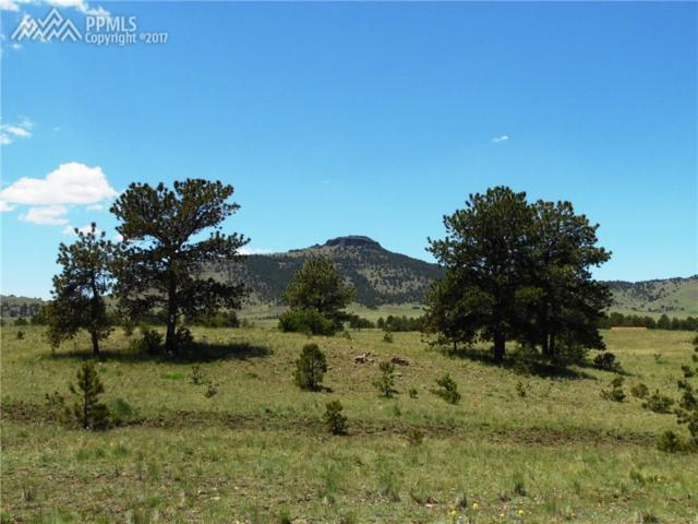 56 View Lane, Guffey, CO 80820 (#2355069) :: Action Team Realty