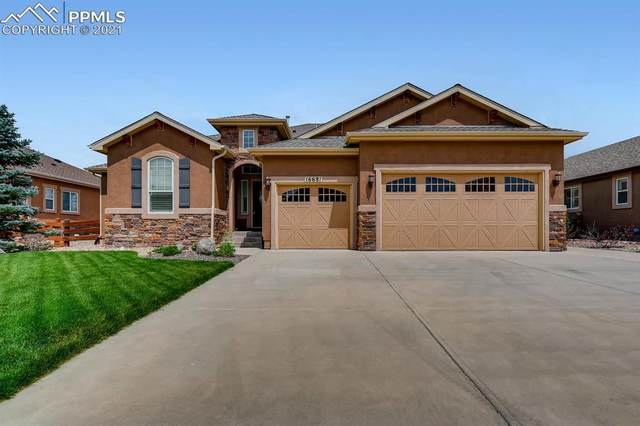 16681 Curled Oak Drive, Monument, CO 80132 (#2355104) :: Re/Max Structure