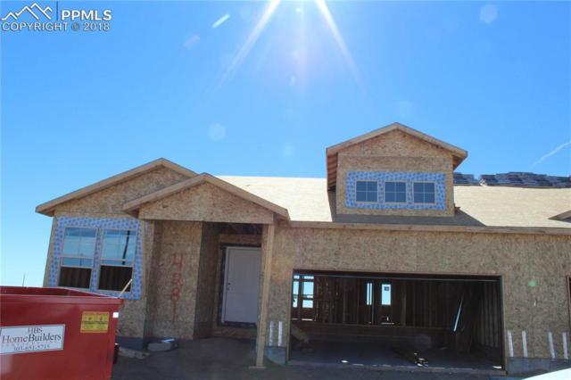 4281 Hessite Loop, Colorado Springs, CO 80938 (#2360824) :: Harling Real Estate
