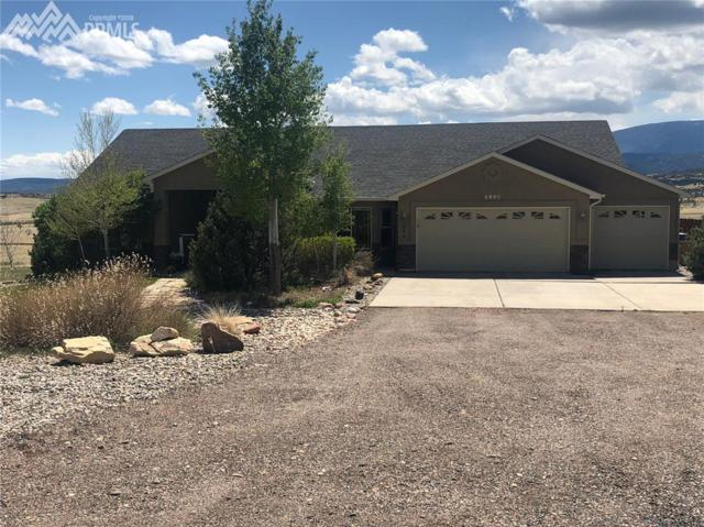 5980 Hart Ranch Drive, Beulah, CO 81023 (#2361628) :: 8z Real Estate