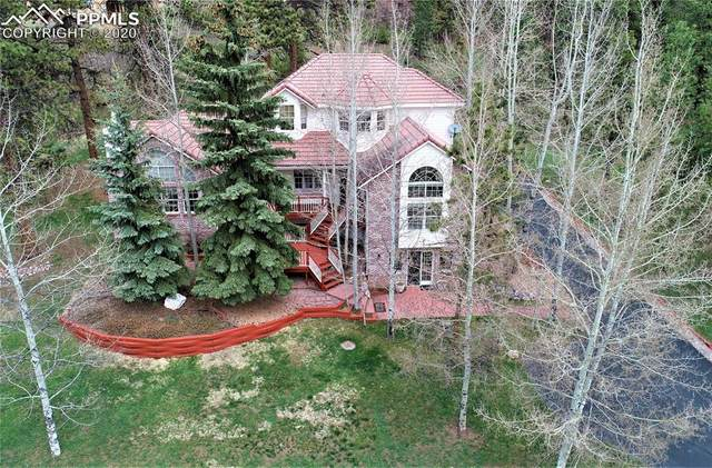 1000 Sun Valley Drive, Woodland Park, CO 80863 (#2361902) :: The Daniels Team