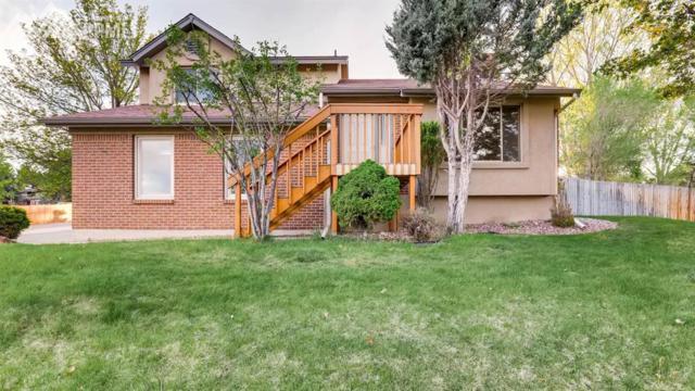 6970 Delmonico Drive, Colorado Springs, CO 80919 (#2361938) :: 8z Real Estate