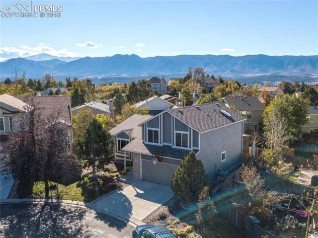 15230 Marblehead Court, Colorado Springs, CO 80921 (#2363150) :: Colorado Home Finder Realty