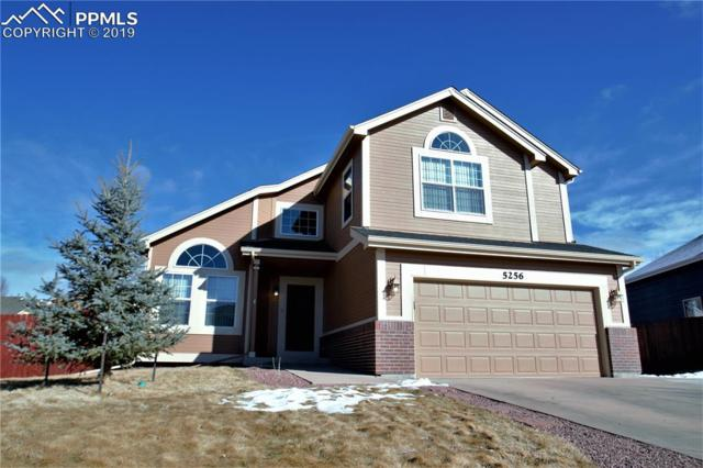 5256 Stone Fence Drive, Colorado Springs, CO 80922 (#2363726) :: Fisk Team, RE/MAX Properties, Inc.