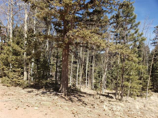 1303 Mountain Estates Road, Florissant, CO 80816 (#2364610) :: Hudson Stonegate Team
