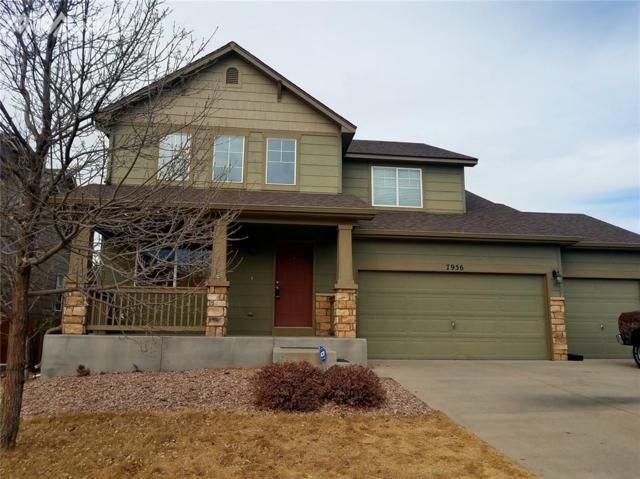 7956 Guinness Way, Colorado Springs, CO 80951 (#2368820) :: 8z Real Estate