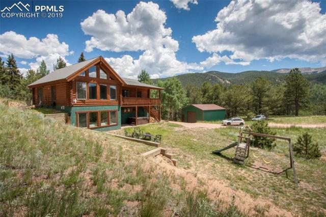 220 Rocky Mountain View, Divide, CO 80814 (#2369130) :: Tommy Daly Home Team