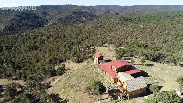Timber Canyon Trail, Trinidad, CO 81082 (#2371715) :: The Hunstiger Team