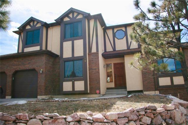65 Pontiac Loop, Monument, CO 80132 (#2372686) :: Action Team Realty